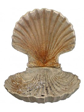 Casta iron fountain - double Pecten jacobaeus