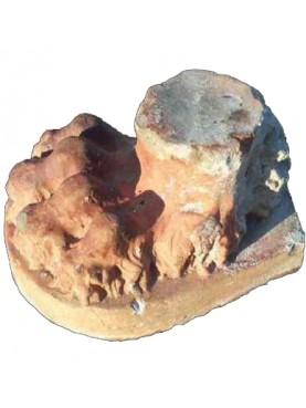 Stupendo piede di leone in terracotta