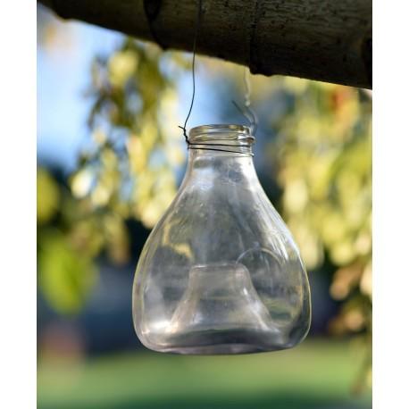 Trappole per vespe e calabroni in vetro soffiato antiche