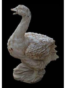 Pergord goose