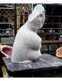Marble crouched Afrodite bust