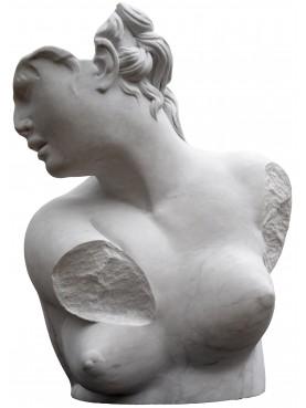 Busto dell'Afrodite accovacciata