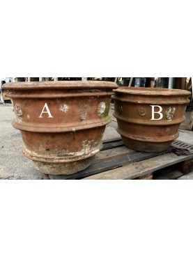 Pair of ancient Tuscan lemon Ø62cms pots in terracotta