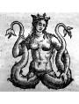 Pannello di Piastrelle Sirena Bicaudata