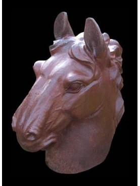 Horse big head