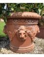 La Conca dei 4 leoni - vaso da limoni in terracotta