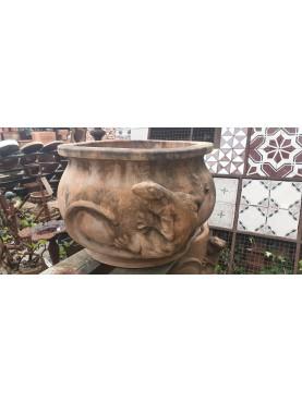 Cachepot con iguana