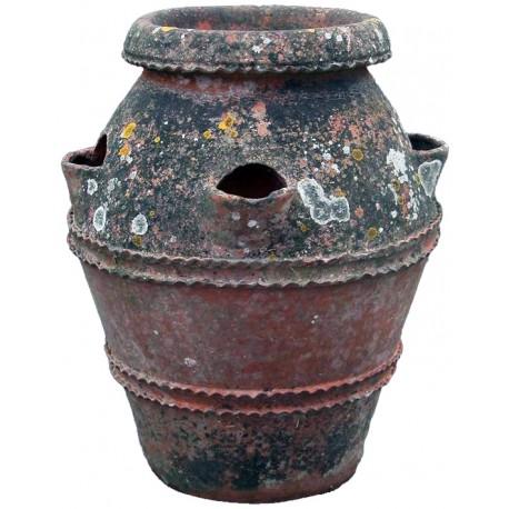 Ancient Tuscan terracotta jar H.65cms strawberries
