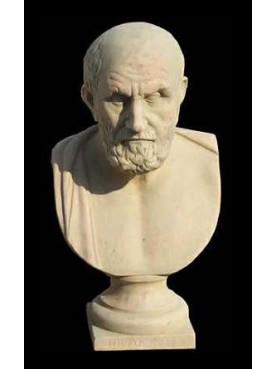 Crisippo di Soli busto in terracotta filosofo