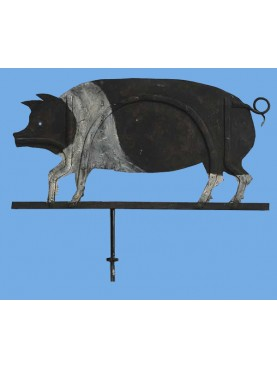 Siena cinta senese boar wind-wane forged-iron