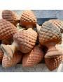 Pine-cone h. 35 cm hand made terracotta