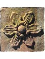 Formella San Miniato terracotta