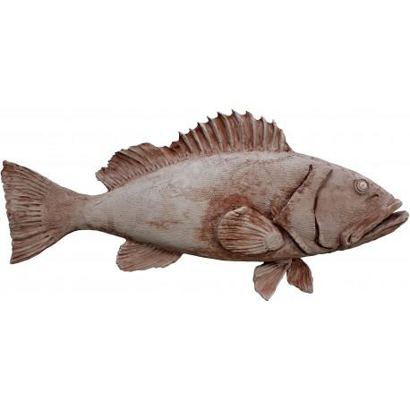 Large Mediterranean grouper in terracotta Epinephelus marginatus