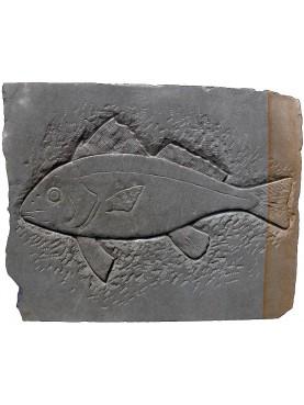 PESCE Bassorilievo in pietra ARENARIA