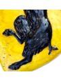 Stemma in maiolica della confraternita dei macellai di Firenze