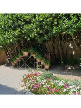 Grande doppia scala portavasi in ferrobattuto per giardino