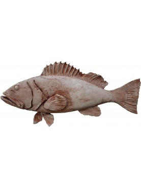 Large Mediterranean grouper in terracotta Epinephelus marginatus