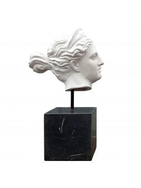 Testa della Diana di Versailles - terracotta bianca