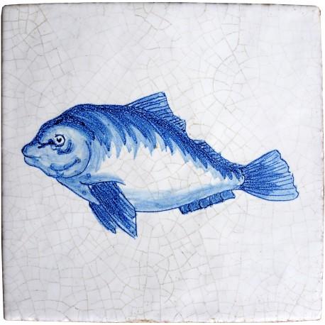 Fishes serie castagnola