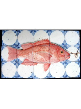 Caraibic Red Snapper