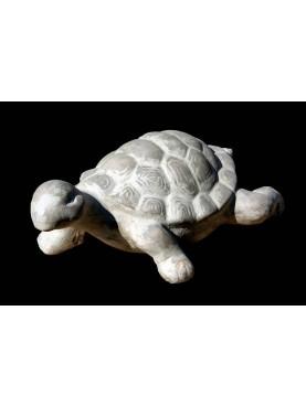 Tartaruga in terracotta