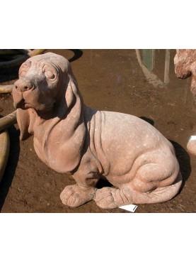Cucciolo di bassethound