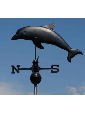 Delfino a tutto tondo