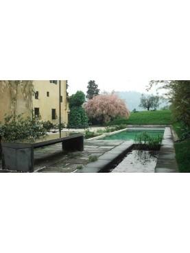 Pietro Porcinai's Garden