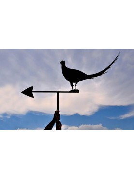 "Our wind-vane ""pheasant with tail in the wind"""