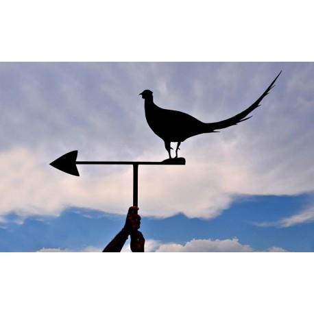 """Our wind-vane """"pheasant with tail in the wind"""""""