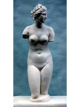 Medici's Venus