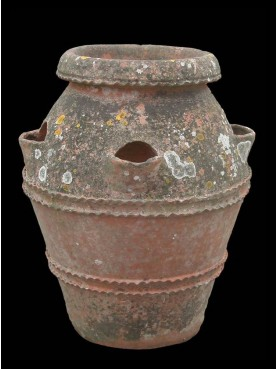 Ancient Tuscan terracotta jar H.65cms strawberries