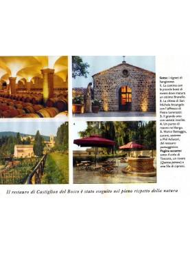Castiglion del Bosco - well