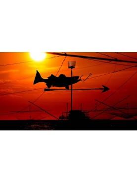 Fisherman's Silhouette