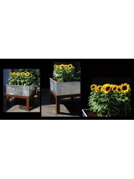 Plant containers 40 cm with iron base and wheels
